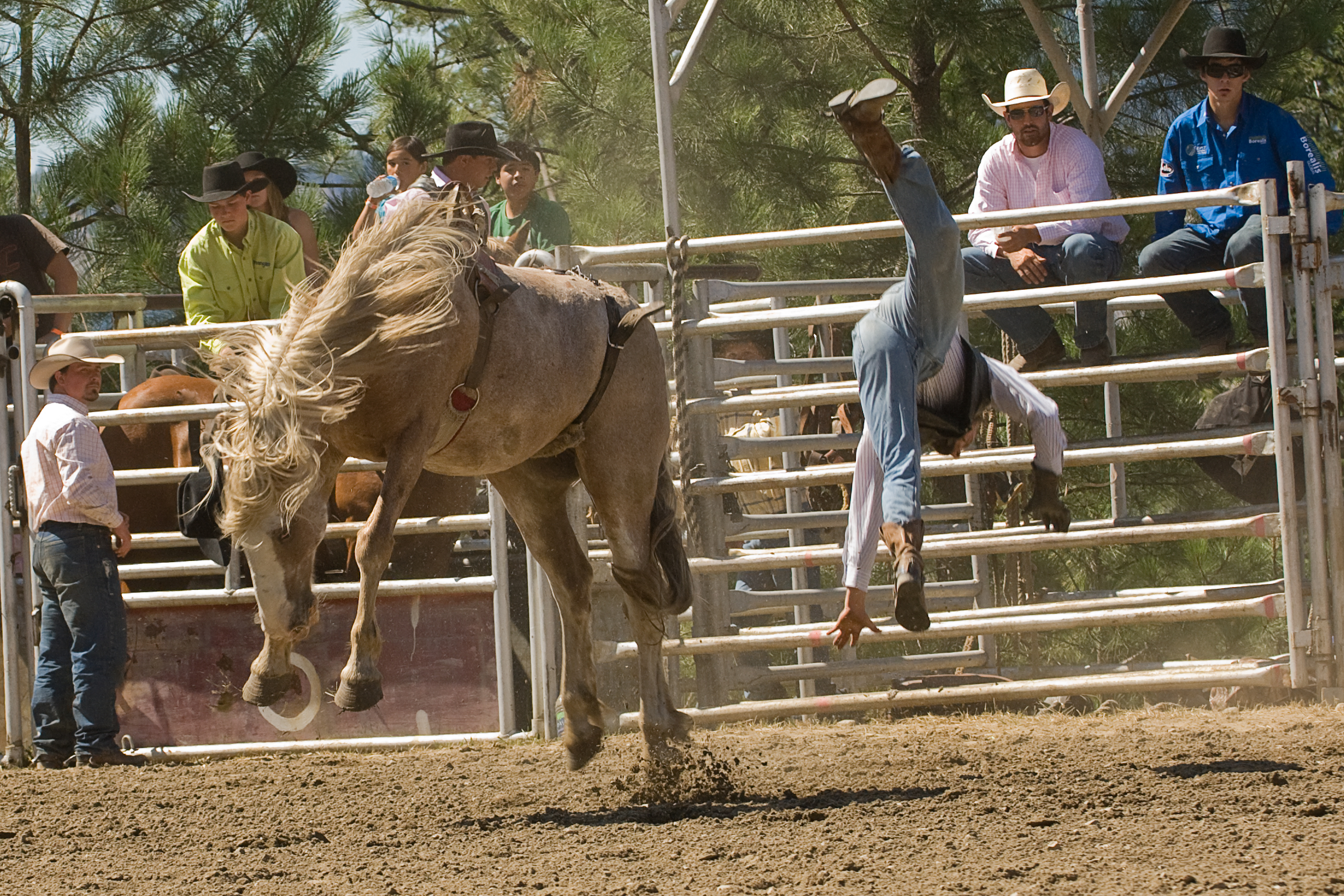 Photographing A Rodeo Enmanscamera S Blog Kamloops