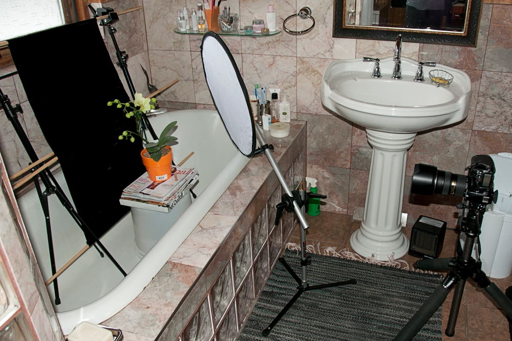Photographing an Orchid in the Bathtub.        (2/2)