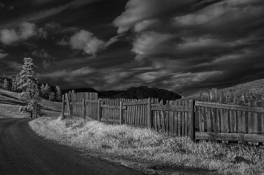 Wandering my Neighborhood with Infrared   (6/6)