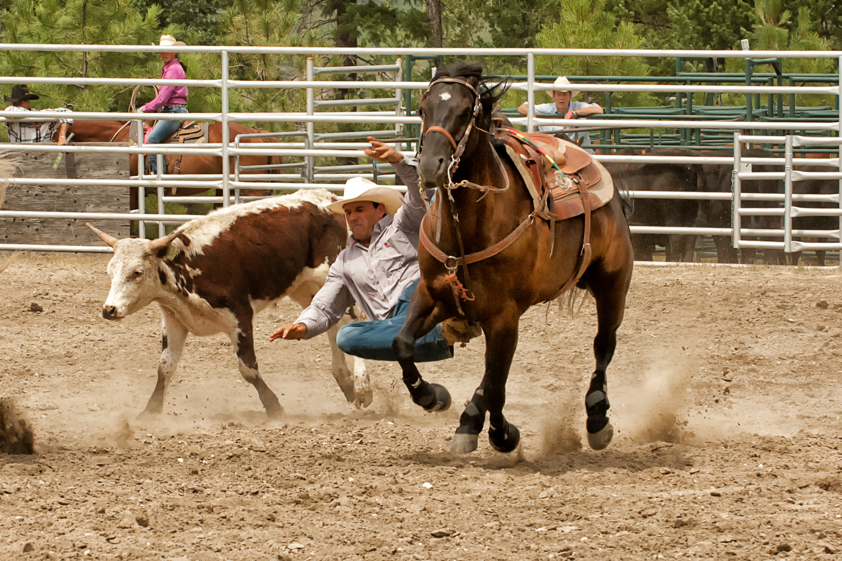 Photography At The Pritchard Rodeo Enmanscamera S Blog
