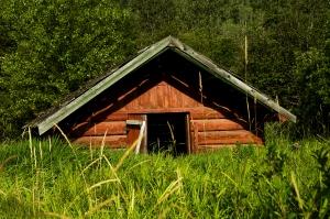WellsGrey shed