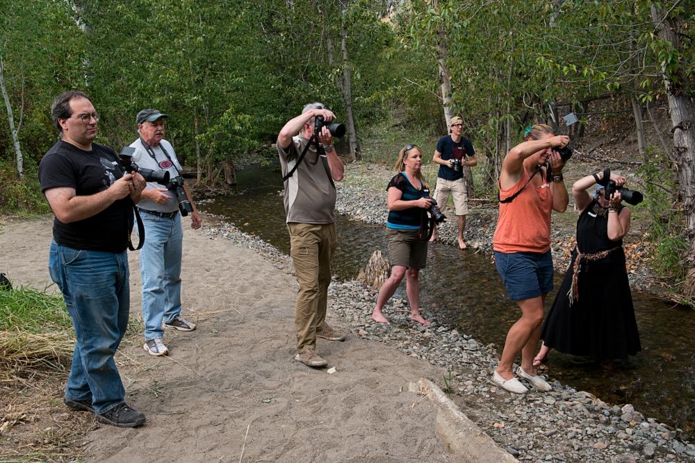 Fifteen Photographers at Open House    (2/4)