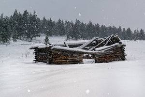 Log building in snow