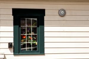Framed flowers & Alarm
