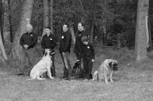 Groomsmen & Dogs