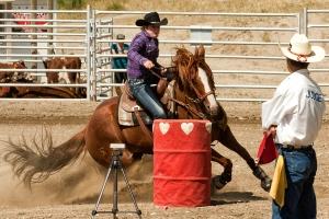 Barrel horse & Rider