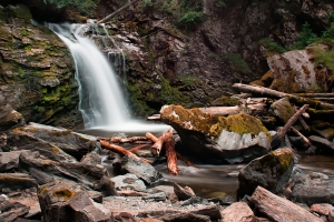 Chase falls in August