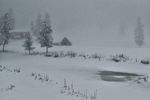 Farm & Pond in fog 2