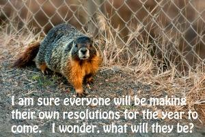 Marmot-b