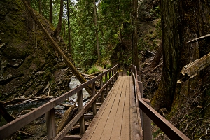 Bridge to Margaret Falls