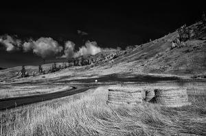 Bales along the road 2