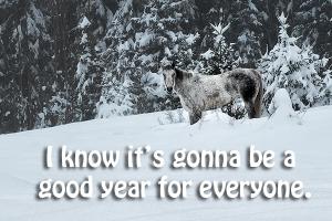 Horse in NewYear Snow