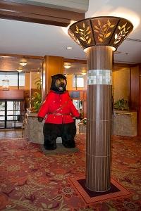 Hoter Bear