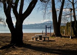 beach-bench-solitude